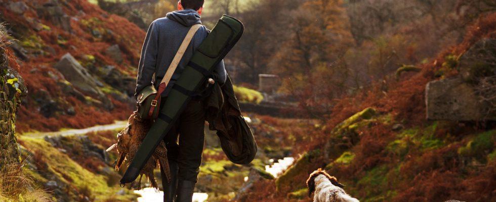 Smart GPS obojky - neztraťte svého psa