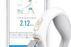 Petkit GO Smart vodítko pro psy a kočky