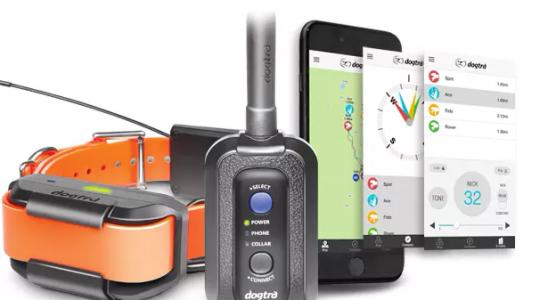 GPS obojek s měřením pro psa