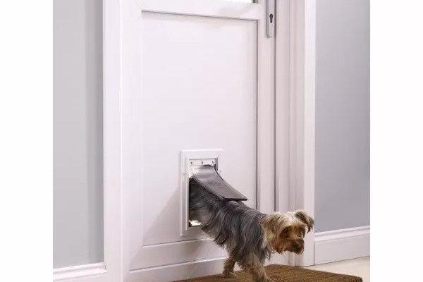 Dvířka pro psy
